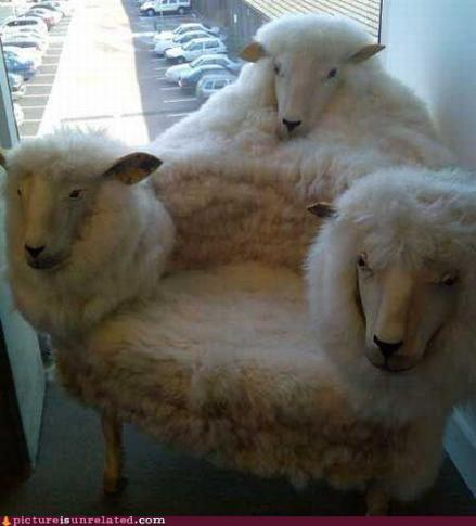 Three_headed_sheep_chair